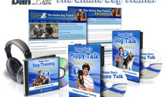 The Online Dog Trainer - Doggy Dan